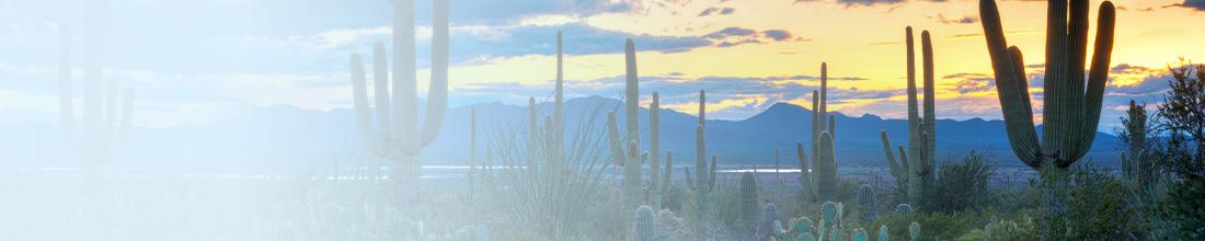 Tuscon Discovery Summit